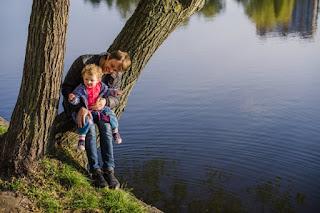 lago, árbol, campo, alegría
