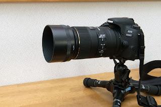 SIGMA MACRO 105mm F2.8 EX DG OS HSM + LH680-03