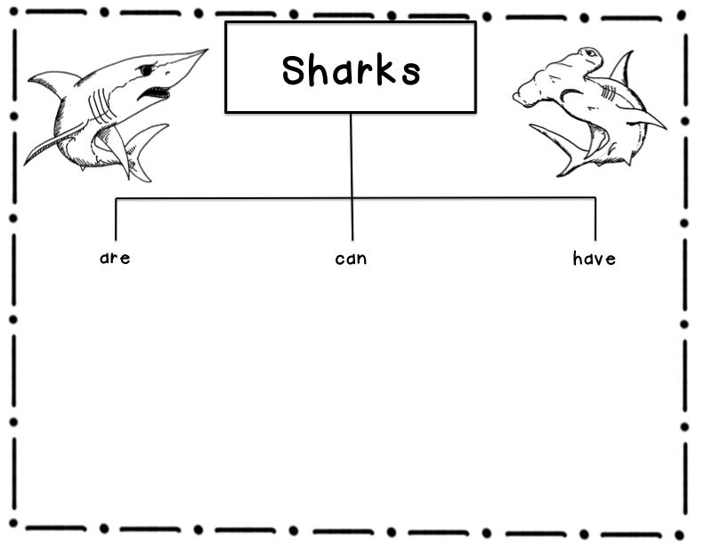 Sweet Sweet Second Grade Gretchen Hilley: SHARK!!!!