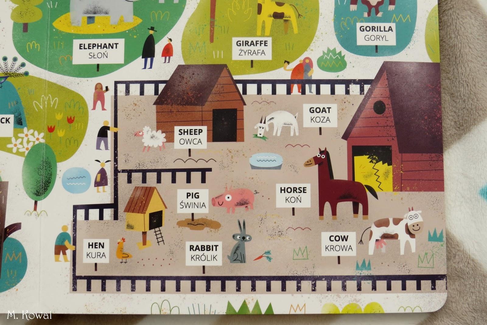 W zoo (zwierzęta dzikie i gospodarskie) – Maciej Łazowski