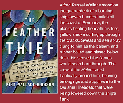 Excerpt from The Feather Thief