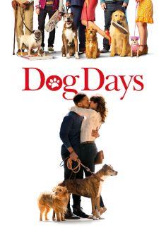 Dog Days Torrent - BluRay 720p/1080p Legendado