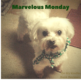 Lexi and On My Kindle Book Reviews, Instagram, #MarvelousMonday