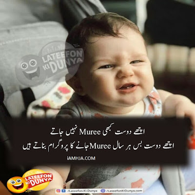 lateefay ki Duniya jokes