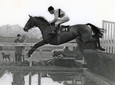 Arkle Race Horse