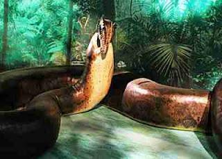 ular titanoboa