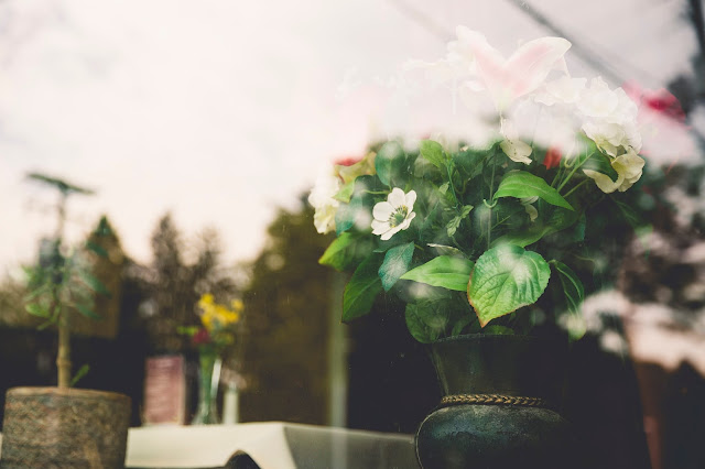 דבר אליי בפרחים - מתנה לטו בשבט