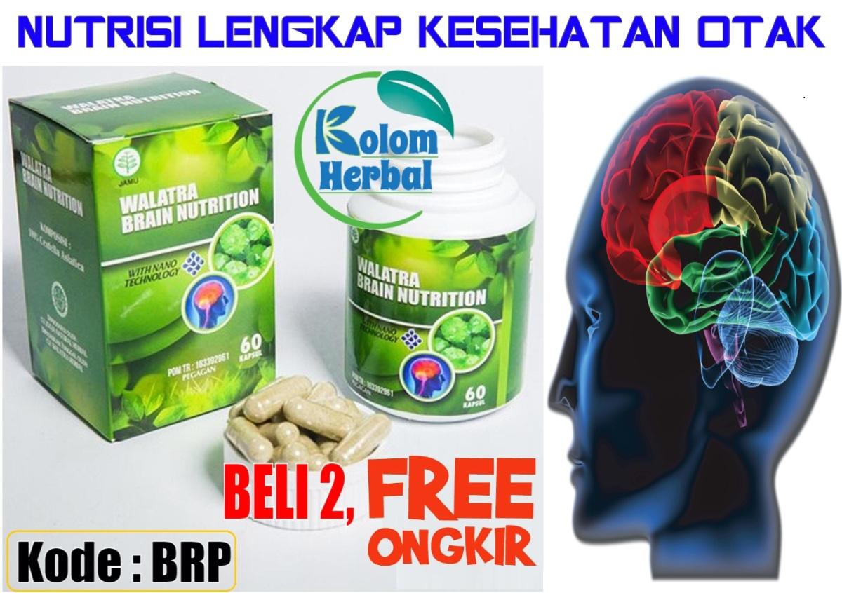 Harga Asli Brain Nutrition