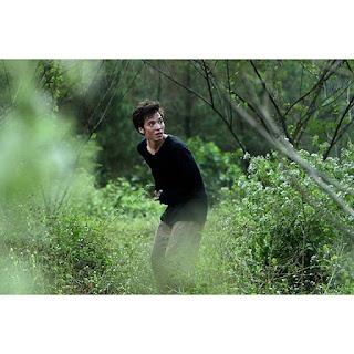profil artis indonesia steven william