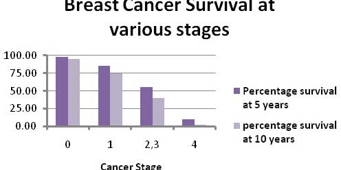 Breast Cancer : The Symptoms of Cancer will Certainly Appear and Grow Quickly Day by Day