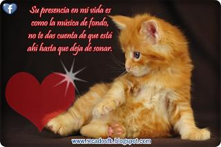 Imagenes  de Amor Animadas con Frases Bonitas