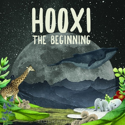 Various Artists – Hooxi, The Beginning (FLAC)