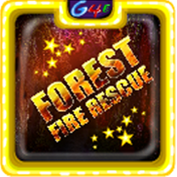 Games4Escape Forest Fire …