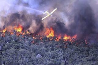 Hundreds Abandons Home As Wildfire In Northeast Australia Razes