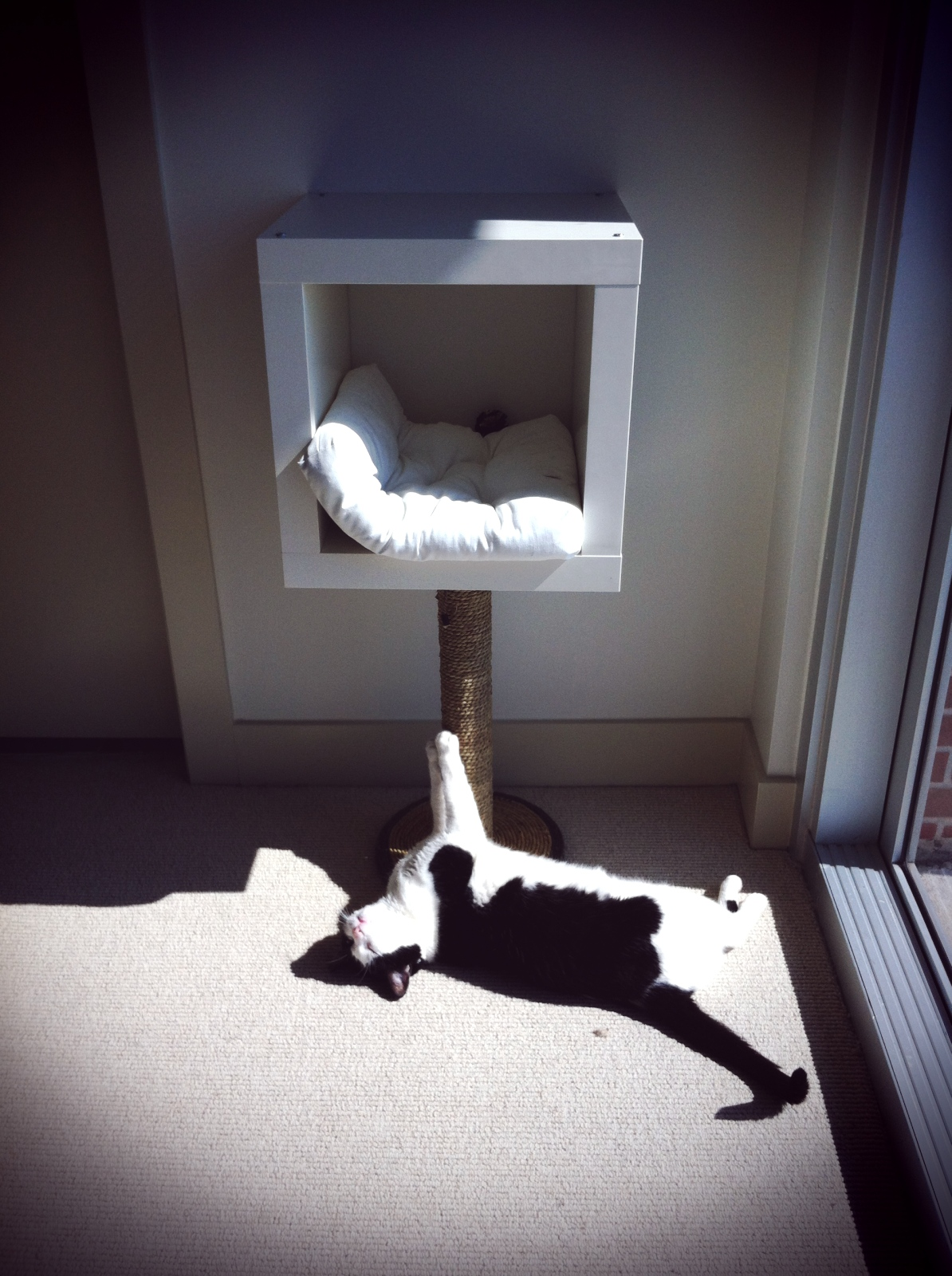 deviant housewife.: IKEA hack = modern cat bed