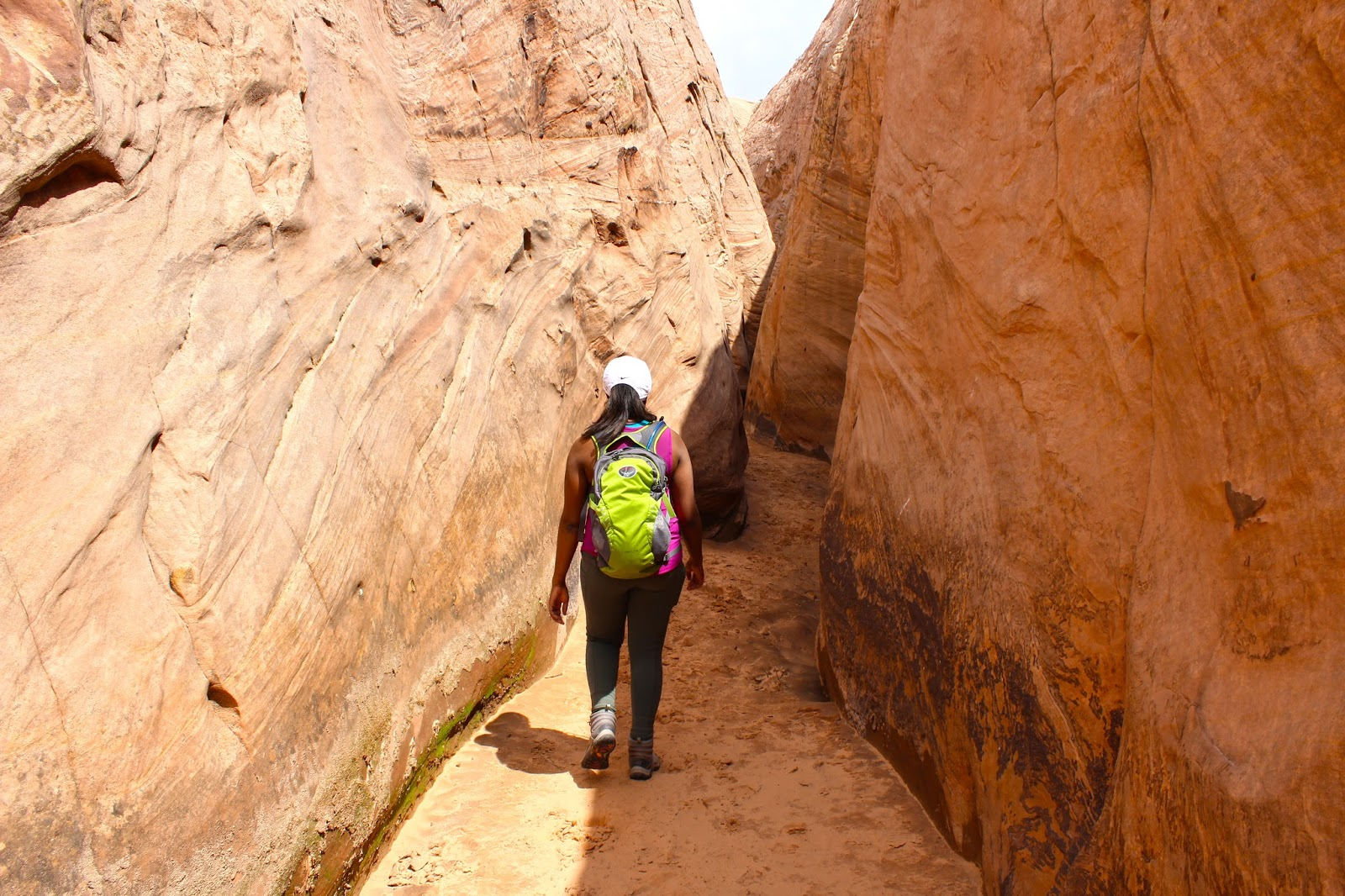 blog zebra slot canyon