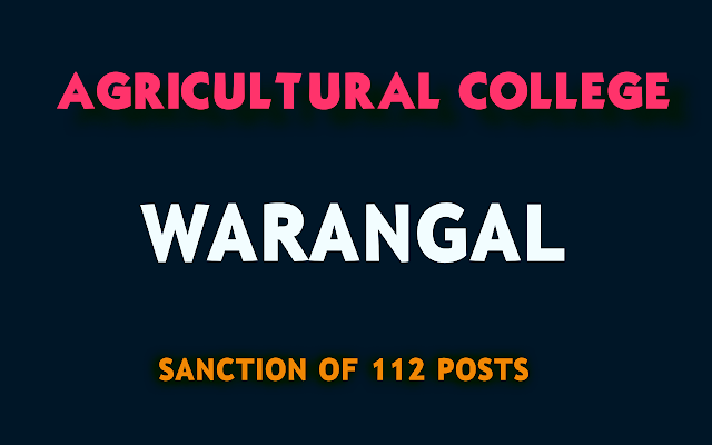 Agricultural-College-Warangal-Creation-of-Posts