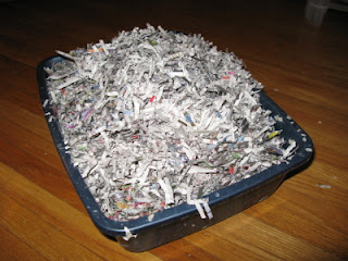 A litterbox filled with strips of paper