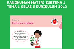 Rangkuman Materi Kelas 6 SD/MI  Tema 1 Subtema 1 Tumbuhan Sahabatku