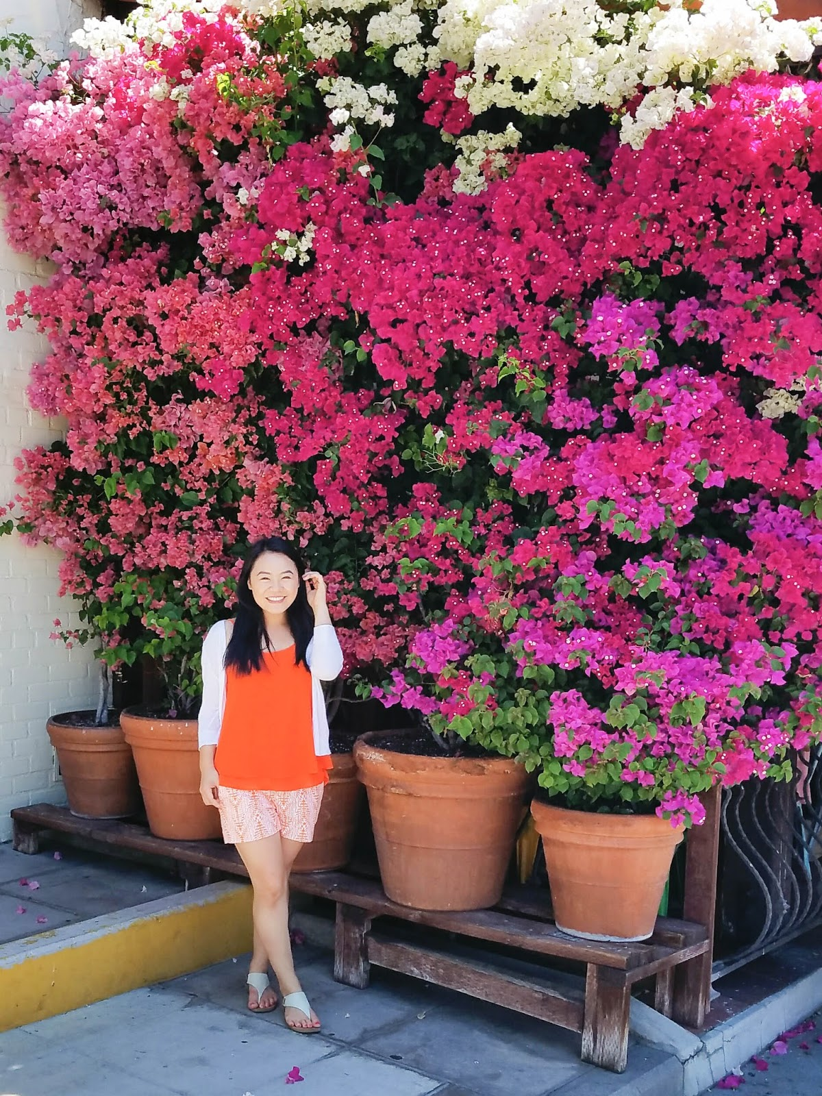 bougainvillea in Downtown Los Angeles | The Bella Insider