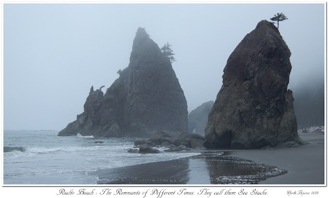 Rialto Beach: The Remnants of Different Times. They call them Sea Stacks.