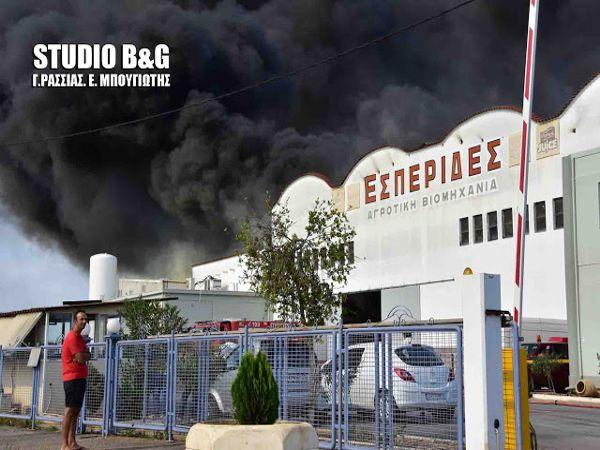 Το Σωματείο Εργαζομένων της Ε.ΑΣ. Αργολίδας στηρίζει τη προσπάθεια της διοίκησης για να ξαναλειτουργήσει το εργοστάσιο ΕΣΠΕΡΙΔΕΣ