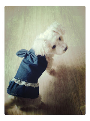 Bichon Frise Nicky Cute Dog Adorable Jeans Dress