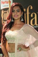 Prajna Actress in bhackless Cream Choli and transparent saree at IIFA Utsavam Awards 2017 027.JPG