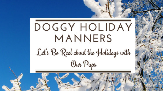 dog training holidays