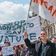 Monsanto, OMG, transgenicos, Genetica, Pesticidas, Semillas,