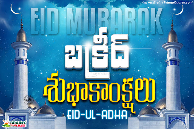 Happy bakrid hd wallpapers free download, famous online bakrid vector hd wallpapers free download