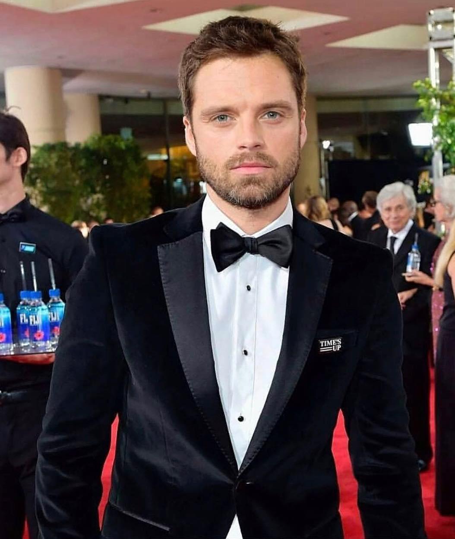 Sebastian Stan Beautiful Pictures - HD Actress Photo