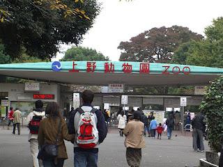 Kebun Binatang Ueno - Tokyo