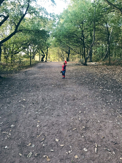 Little boy walking on a woodland path, whilst dressed as Spider-Man and carrying a soft toy