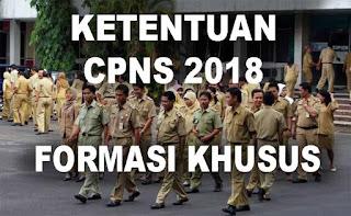 Inilah Ketentuan Rekrutmen CPNS 2018 Formasi Khusus