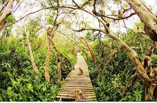 Pulau kembang masih asri