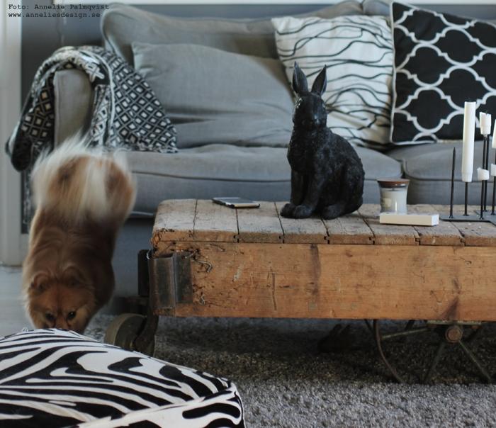 athena, annelies design, webbutik, webshop, pomeranian, blandras, pappillon, hund, hundar, inredning, vardagsrum, vardagsrummet, soffa, woodwick doftljus, ljus, kanin, kaniner, inredningsdetaljer, inspiration, kuddfodral, kuddar, textilier
