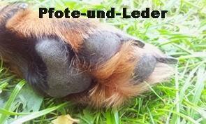 http://www.pfote-und-leder.de/
