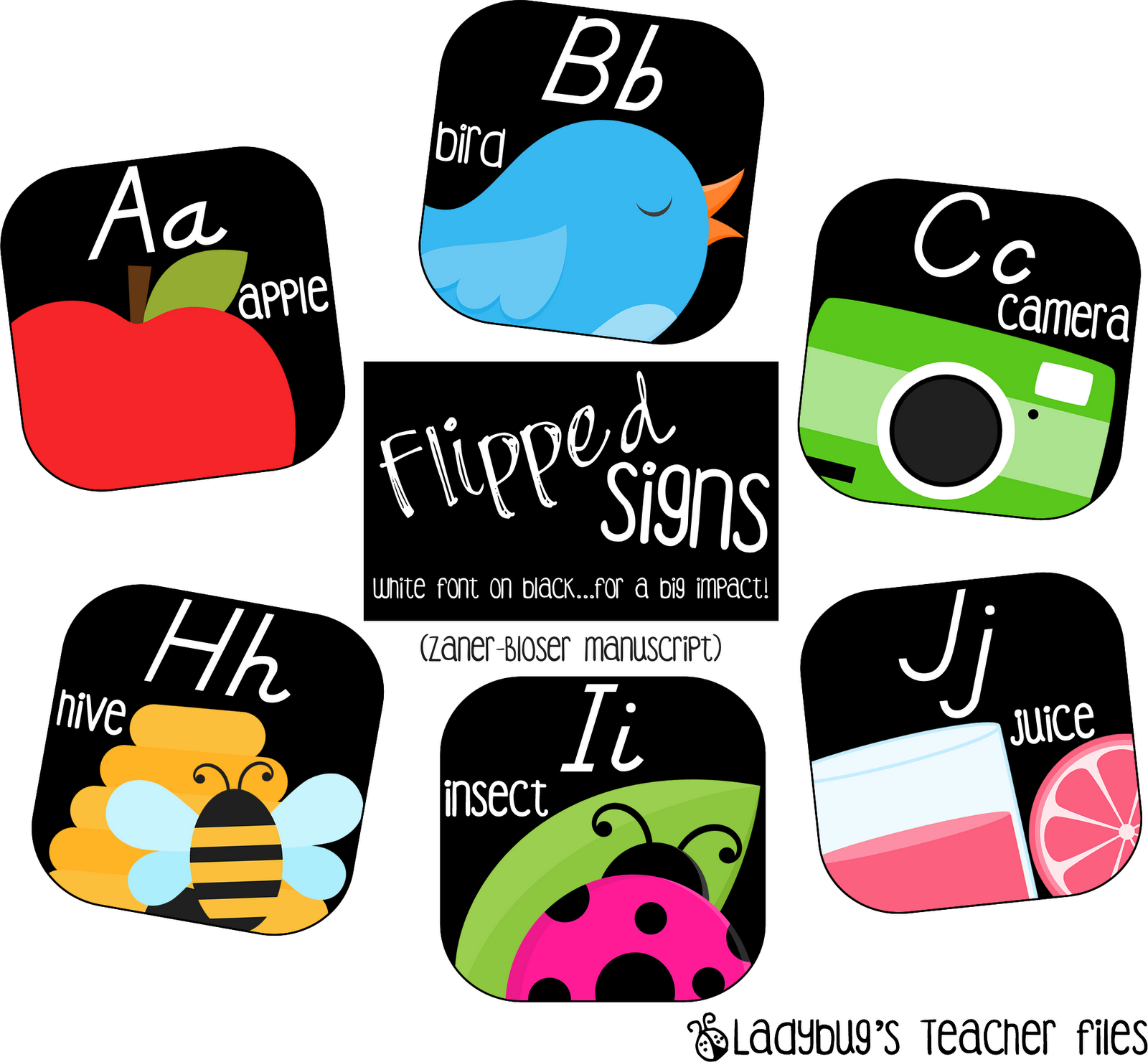 Schedule Signs And Alphabet Lines Ladybug S Teacher Files