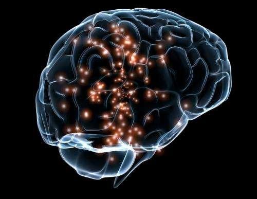 proses lupa otak