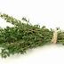 Cea mai puternică plantă care distruge STREPTOCOCUL, HERPESUL, CANDIDA şi VIRUSURILE GRIPALE
