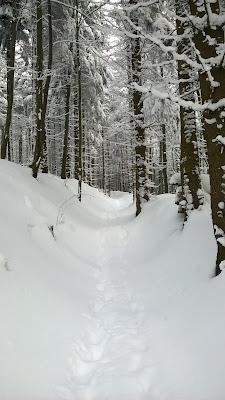 śnieżna rynna