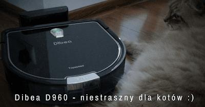 Dibea D960 koty