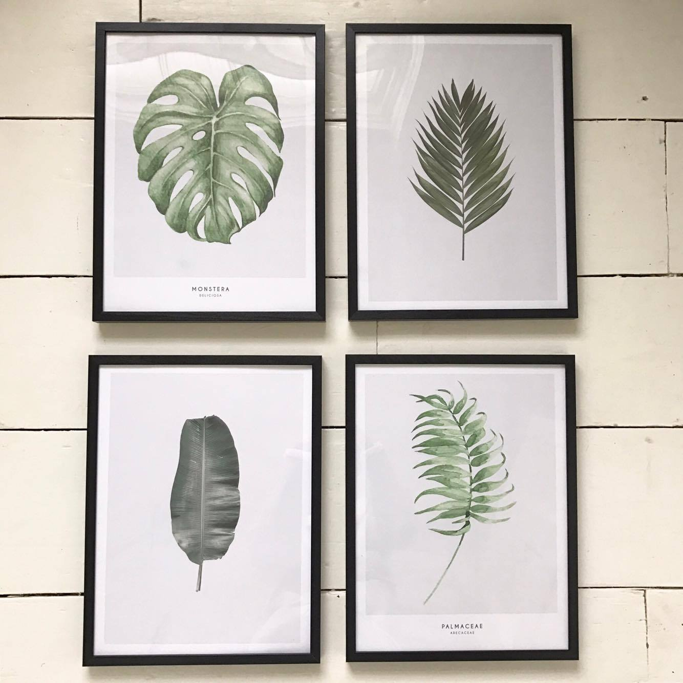 new year new prints plus a discount code roses and rolltops
