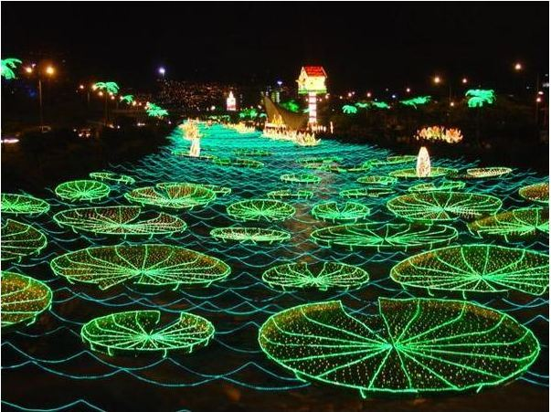 Cool Things To Do With Christmas Lights