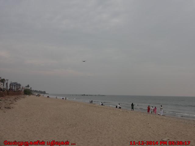 Malabar Coast Beach Kerala