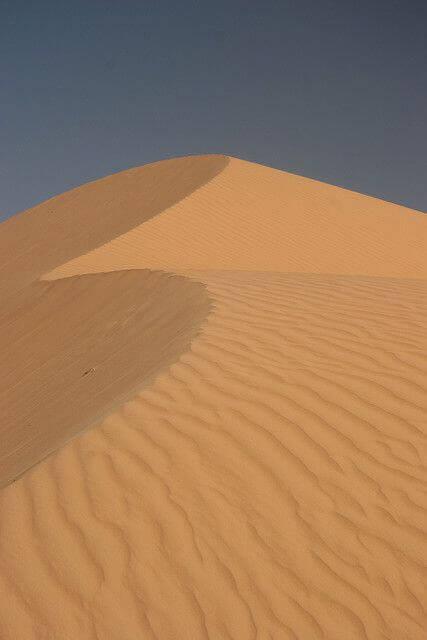 Plain | Sahara desert Mauritania