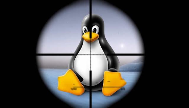 Ransomware sequestra 153 servidos Linux e empresa teve que pagar R$ 3 milhões de resgate.