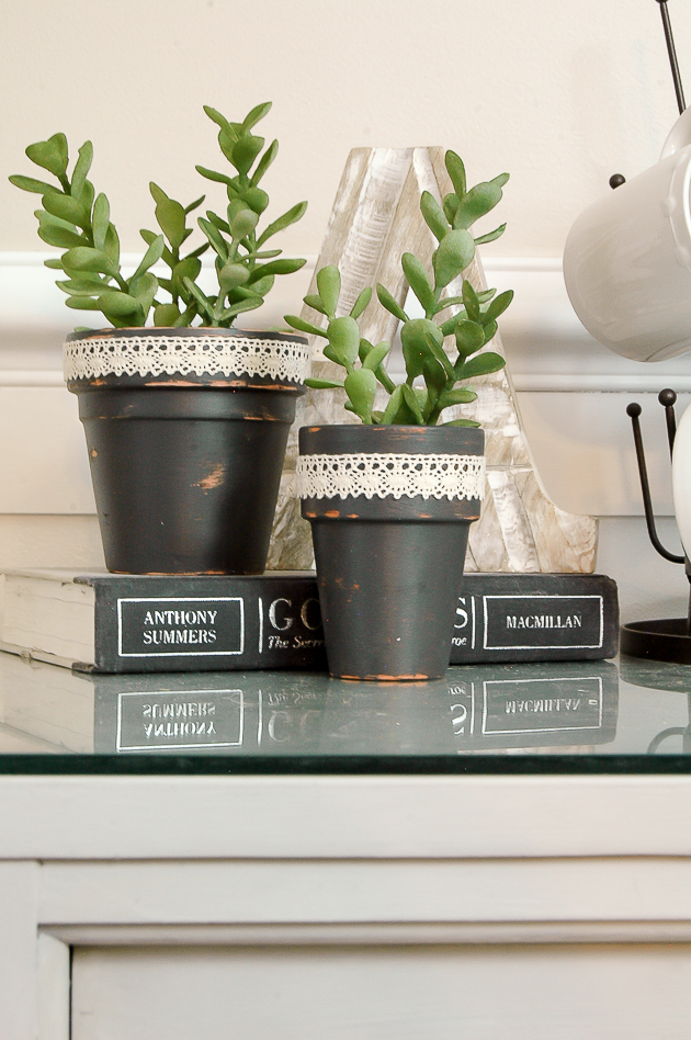 Dollar Tree succulents turned farmhouse decor
