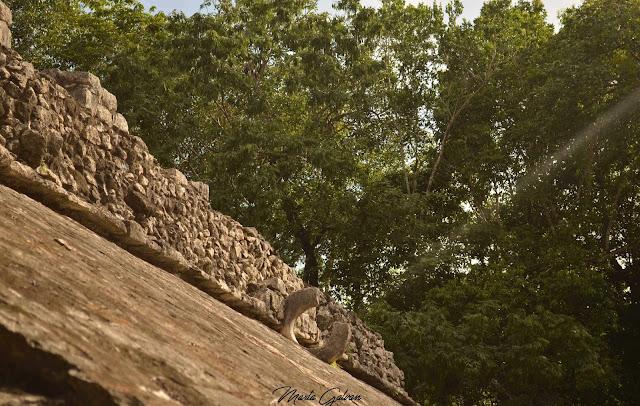 Aro del campo de Juego Maya